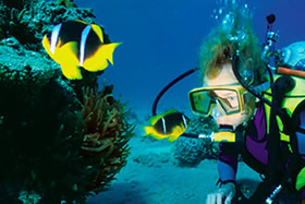 4-Night Scuba Package