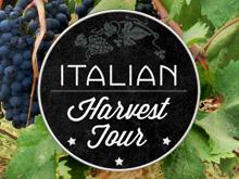 Italian Harvest Tour