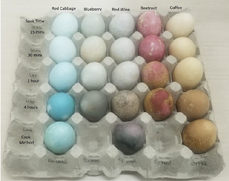 Tray of blue dyed eggs