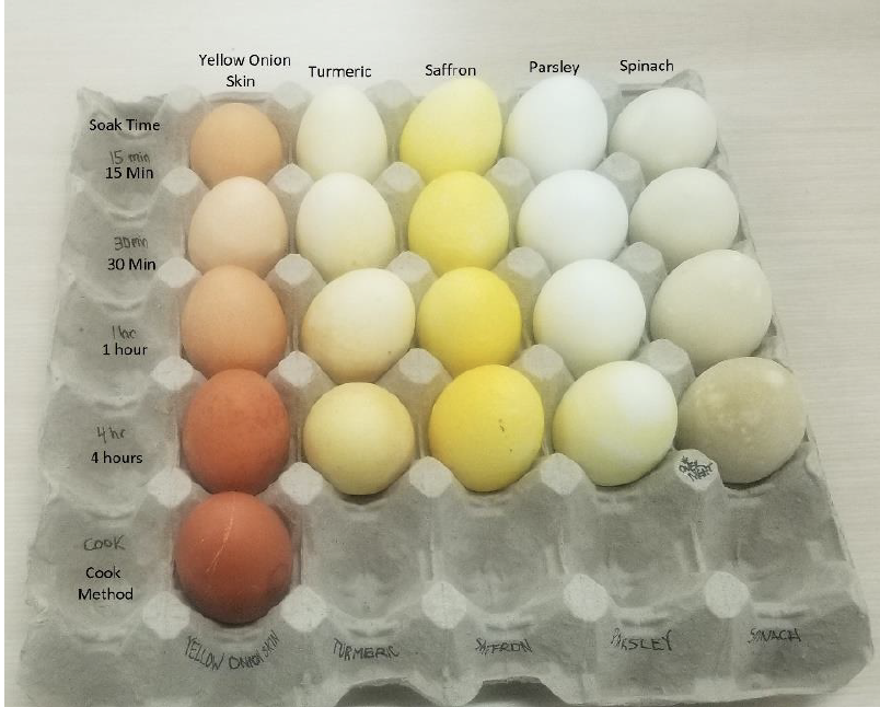 Tray of yellow dyed eggs