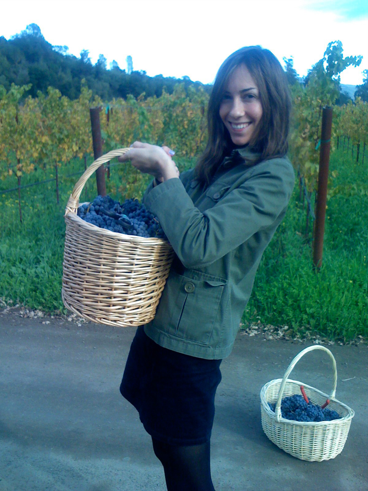 Gia holding a basket of grapes in a vineyard.