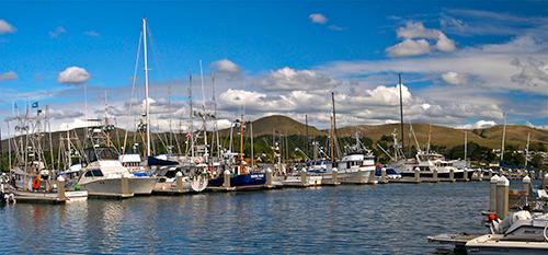 A boat filled marina in Bodega Bay.